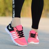 2018 봄 Man Casual Sport Shoes/Sneaker Shoes Casual 훈련 Shoes