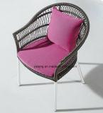 Insieme di caffè esterno del giardino della mobilia del Pe-Rattan di alluminio popolare di disegno (YT940)