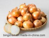 중국 경쟁적인 신선한 노란/빨간 양파