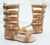 As crianças Toddler Gladiator Sandals
