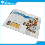 Jährliches Finanzreport-Broschüre-Drucken