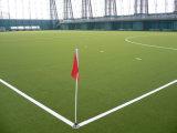 Wmg baratos fútbol artificial de la hierba