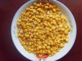 425g en latas de oro dulce del núcleo de maíz con la mejor calidad