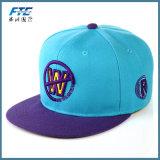 3D 로고 자수 Snapback 모자를 가진 주문 3D 야구 모자