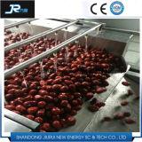 セリウムの公認の空気泡葉が多いレタスの野菜の洗濯機