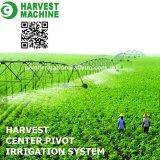 Het Systeem van de Irrigatie van de Spil van het Centrum van het landbouwbedrijf voor de Landbouwgrond van het Gras met het Kanon van de Kop van de drijfstang