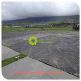 Material 100% reciclado/UHMWPE/HDPE/ barata Priceheavy deber carretera temporal Mat