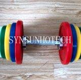 De Apparatuur van de gymnastiek, de Reeks van de Domoor van Kleuren