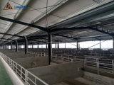 China el diseño de estructura de acero de bajo coste Establo establo para caballos y ovejas /Cerdo /vaca