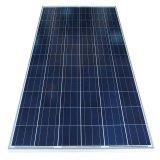 Poli modulo solare 305W per il sistema solare 5kw