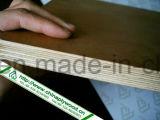 연필 삼목 참피나무 합판 상업적인 합판 패킹 또는 멜라민