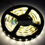 5054 LED Light Strip 60LEDs / M utilisé sur l'éclairage décoratif