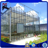 조건 광전지 유리제 온실 Mulit 새로운 경간 농업 태양 온실