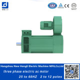 Snelheid Adjustment 50Hz 60Hz Three Phase AC Motor