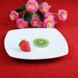Vaisselle blanche réglée de grand dos de porcelaine de dîner de jeu de vaisselle marocaine en céramique de mode