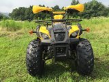 Mise à jour Motorcycle 110cc ATV 125cc ATV for Kids