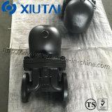 주철강 공모양 부낭 증기 벨브 Pn40 (두 배 시트)