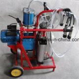 El pistón y operar la máquina de ordeño de vaca eléctrico