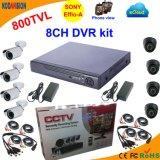 8 채널 800tvl Free Cms Software CCTV System