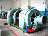 Turbo-générateur hydraulique/Hydroturbine de Francis d'hydro-électricité (l'eau)