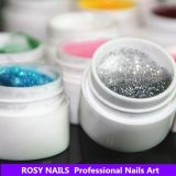Rosy Ongles en Gel d'art Private Label 36 Couleur peinture UV Gel