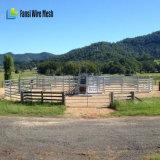 Comitato all'ingrosso del bestiame/comitati usati del bestiame