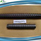 ASTM615/GR40/GR60 da haste de ferro de Aço Construção