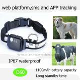 Neueste IP67 imprägniern Haustiere GPS-Verfolger mit Geo-Zaun D60
