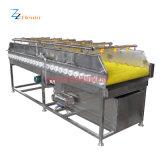 Rondelle végétale de fruit de grande capacité de fournisseur de la Chine