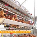 卵の鶏のケージを上げるフレーム3-4層の自動層