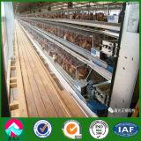 Il pollame prefabbricato di alta qualità alloggia con il certificato di ISO/SGS