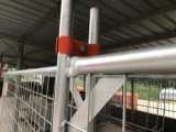 42 Mikrons galvanisierten temporäre fechtende Panels