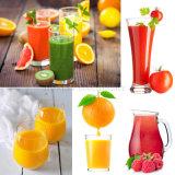 Frutta dell'acciaio inossidabile/estrattore industriali succo di arancia/della carota