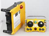 기중기 조이스틱 2transmitter 1receiver를 위한 Henan Deke F24-60 산업 보편적인 무선 라디오 원격 제어 조이스틱 AC/DC