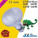 80W 100W 125W 160W Lampe UV Reptispa Sun Self-Ballasted UVA UVB lampe à vapeur de mercure