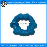 Quartet solide de l'animal familier TPR de dents d'os sur des approvisionnements d'animal familier de crabot de jouet