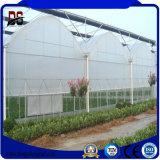 Légumes de serre Plastic-Film agricole Multi-Span utilisé pour la vente