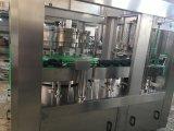 ペットはガスを供給することができる含んでいる飲料の生産ライン(TG18-4)を