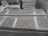 Nieuw Van de Bron steengroeve van het Graniet Substituut voor G664 Vervanging van het Graniet van /G687 de Gelijkaardige
