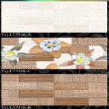 300x450mm Livingroom Azulejos (Tsj-L17332)