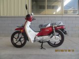 100cc Cub neuf Maroc Becane/Benelli C100 Moto/moto (SL100-C1)