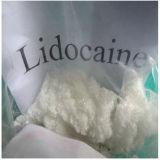 Pureza de 99% xilocaína fábrica HCl/Lidocaína/Lignocaine em pó