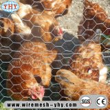 PVCによって塗られる電流を通された家禽ワイヤー1/2 Hexの網