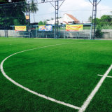 عشب اصطناعيّة على خرسانة لأنّ كرة قدم رياضات (SE)