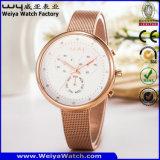 Reloj clásico del asunto del reloj del acero inoxidable (Wy-091B)