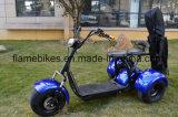elektrischer Roller des Golf-1500W mit 3 Rad-Lithium-Batterie