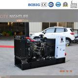 Aprire il tipo il generatore 20kw di Lijia