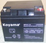 광저우에서 만들어지는 전기 시작을%s 12V42ah AGM 건전지 태양 전지 AGM/VRLA 납축 전지 Np42-12