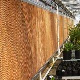 Casa de aves de capoeira na almofada de resfriamento evaporativo Emissões/Factory