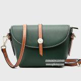 Ontwerper van de manier besloeg de Kleine Handtas In het groot Emg5341 van Dame Tote Bag Women Genuine Leer